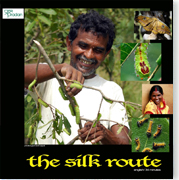 The Silk Root