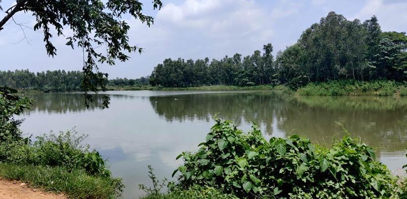 River-Rejuvenation