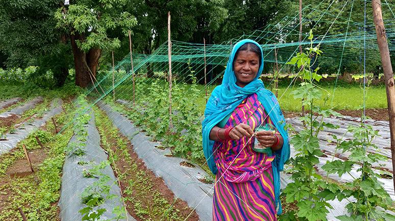 Asmati-Didi,-Hiramdeyi-SHG,-working-on-her-homestead