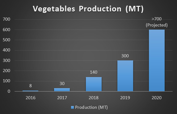 Vegetables-production