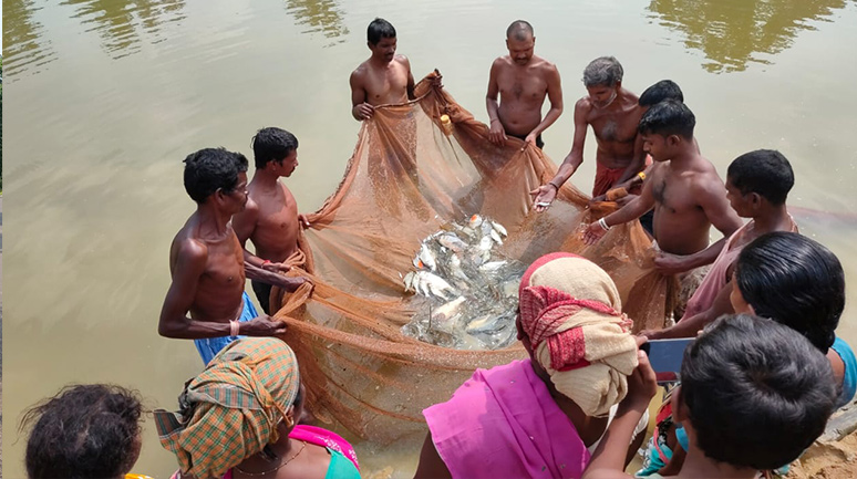 Netting-and-Growth-mapping-in-Pond-of-Sunti-Bai---PC-Anurag-Kumar