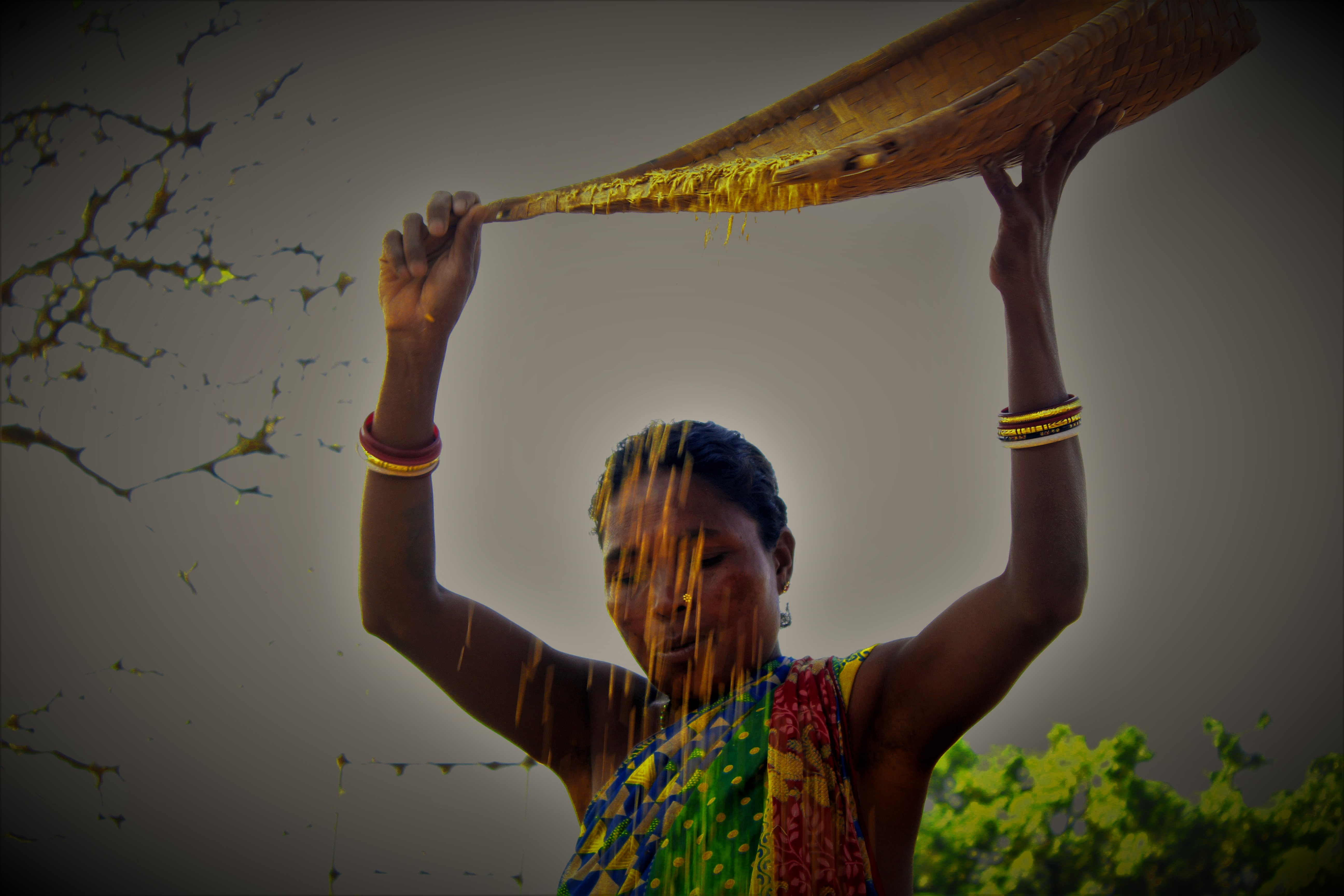 Adivasis-their-Universe-and-Me