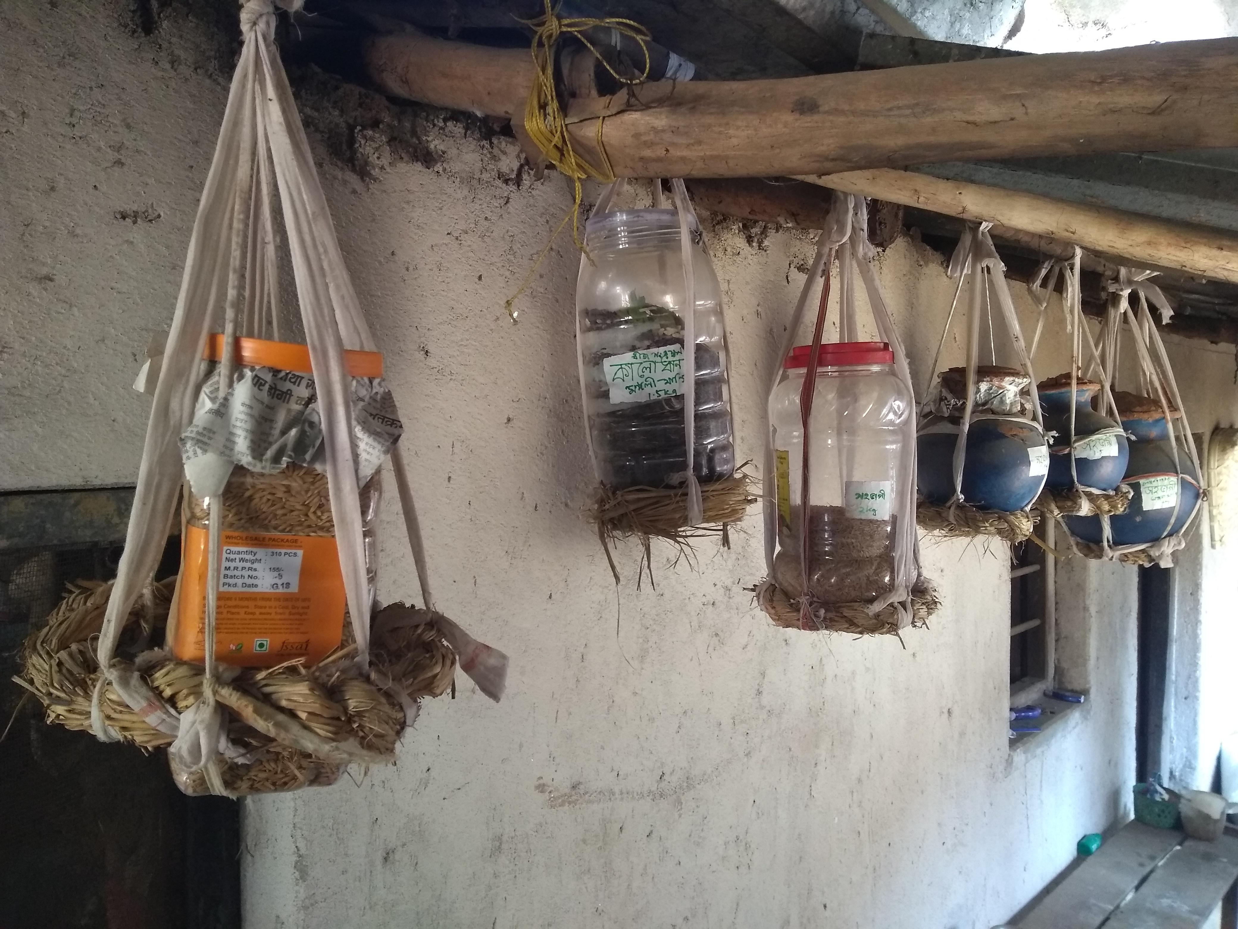 Paddy-Seed-prervation-at-Gokulnagar